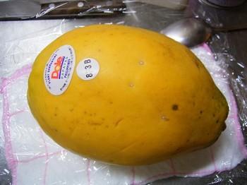 papaya001.jpg