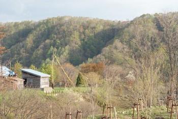 yubari03.JPG
